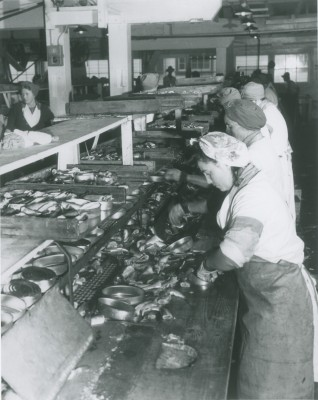 Women packing herring at the Gulf of Georgia Cannery, October 3, 1945 CFC-3-5-1