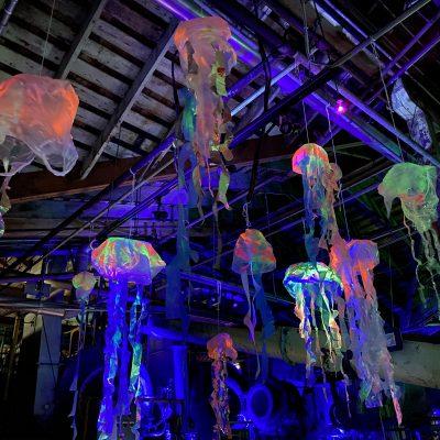 haunted sea jellyfish